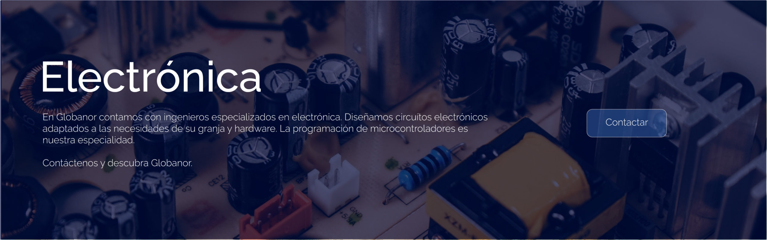 s_electronica